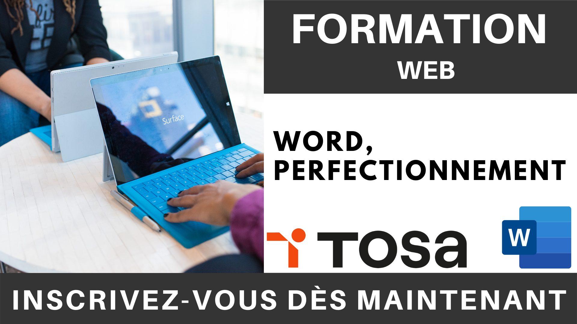 Formation LOGICIEL - Word, Perfectionnement (2)