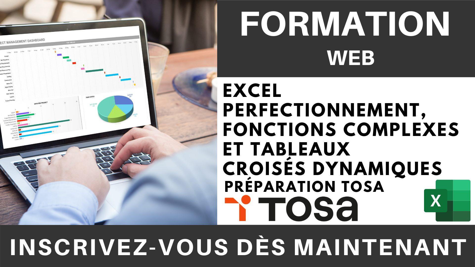 Formation Web - Excel Perfectionnement, Fonctions complexes et Tableaux croisés dynamiques - Préparation TOSA