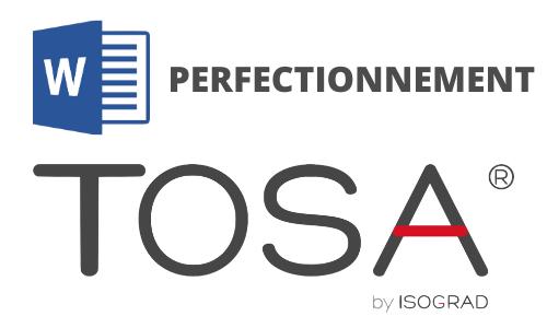 Formation Word Perfectionnement Préparation TOSA
